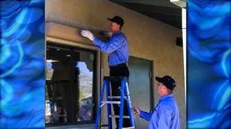 Pest Control Services Tucson, AZ -- Wildcat Exterminating