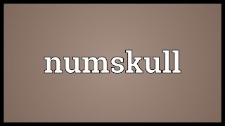 Numskull Meaning