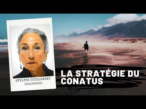 La stratégie du conatus (Spinoza), Evelyne GUILLEMEAU