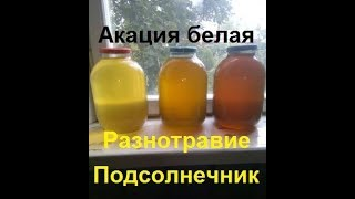 Продать мёд в розницу.Мёд оптом не сдаю.Как получить прибыль с пасеки  от продажи мёда.