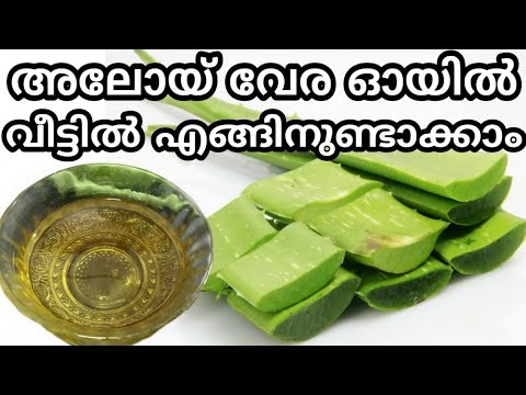 How To Make Oil From Aloe Vera Gel At Home In Malayalam | Kattarvazha Oil Malayalam |  Aloe Vera Oil