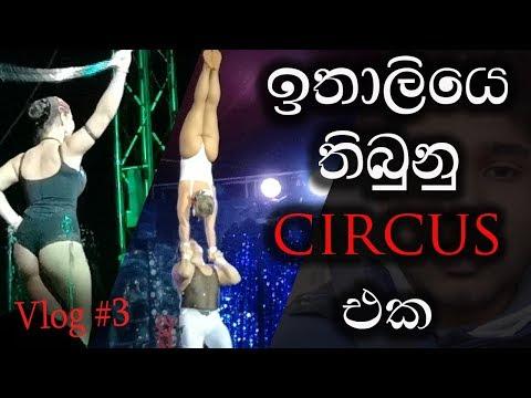 italy-circus-balannama-one