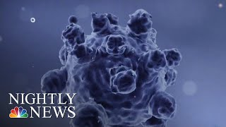 2019 On Track To Break Record For Most Measles Cases In 20 Years, Says CDC | NBC Nightly News