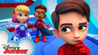 WEB-STER | Marvel's Spidey and his Amazing Friends | @Disney Junior  @Marvel HQ