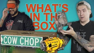 WHAT'S IN THE BOX CHALLENGE (Water Edition)