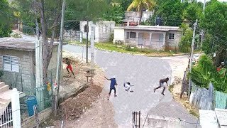 Caught On Camera In St. Elizabeth Jamaica