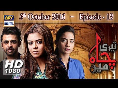 Teri Chah Mein Ep 12 - 5th October 2016  - ARY Digital Drama