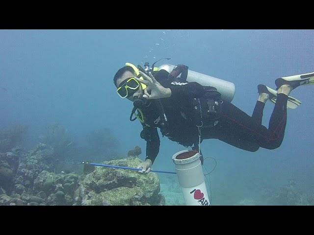 Aruba Lionfish Hunting 2017 with Ed Egan & Eric Ras