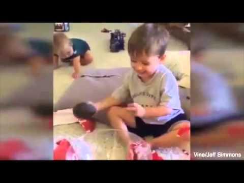 AVOCADO GIFT REMIX - YouTube