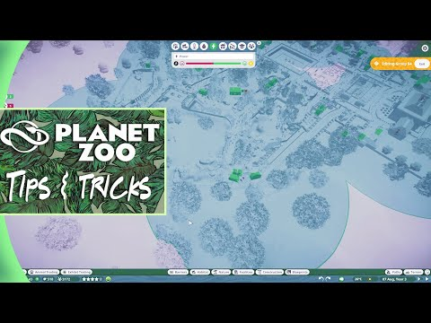 I found the Holy Grail for Planet Zoo sandbox mode! |