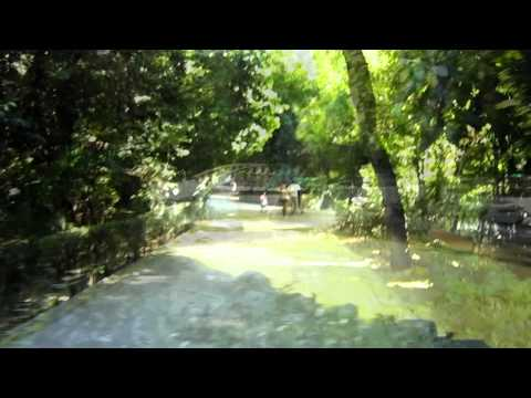 Walking in the National Gardens - Athens, Greece [HD video]