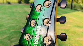 This Special Type of Marketing... Appeals to Select Buyers   Trogly Great Guitar Hunting