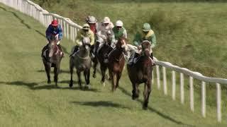 Vidéo de la course PMU PRIX DE LA SOCIETE DES COURSES DE MARTINIQUE)