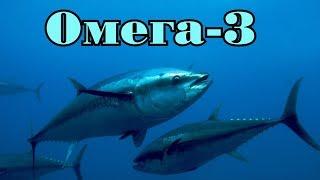 Омега-3 и рыба. Как обманывают людей.