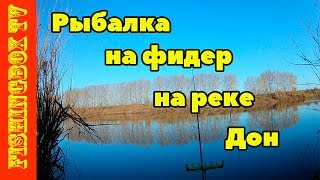 Рыбалка на фидер на реке Дон 29/04/2018