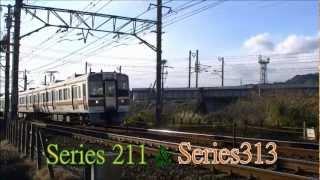 JR東海 東海道本線 @狐ヶ崎駅付近