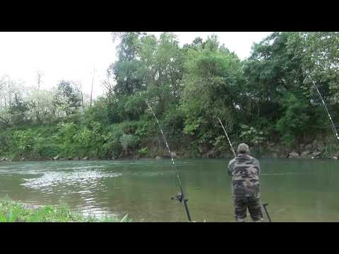 Premier Silure De L'adour 2017.........catfish Fishing......HD