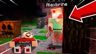 ALEXBRINE WAS ON THIS MINECRAFT WORLD..