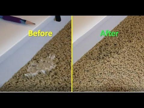 How To Get Slime Out Of Carpet Easy Simple Quick Youtube