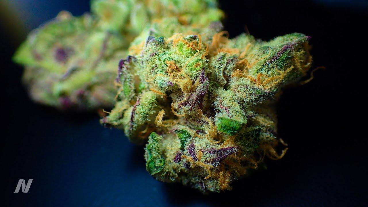 Does Marijuana Cause Strokes and Heart Attacks?