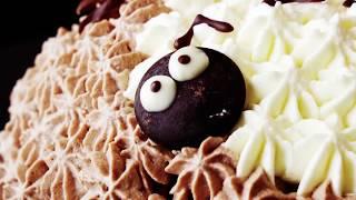 Totoro Dome Cake