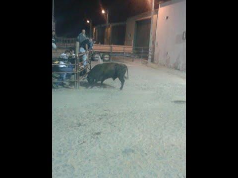 touro na rua são bartolomeu outeiro 2014