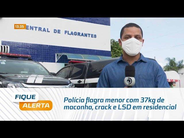 Polícia flagra menor com 37kg de maconha, crack e LSD em residencial