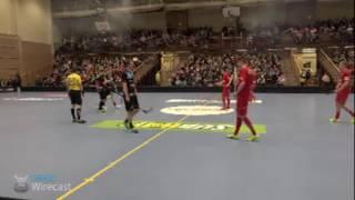 Happee Floorball Live-stream