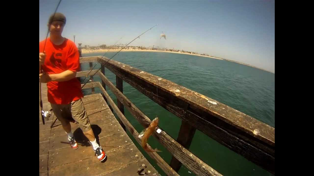 Reelninfish episode 17 fishing on the seal beach pier for Seal beach fishing