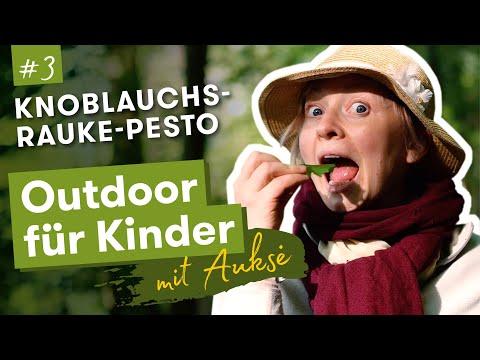 Aukse TV | Outdoor für Kinder | Knoblachsrauke Pesto