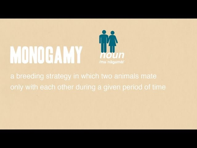 Monogamy def