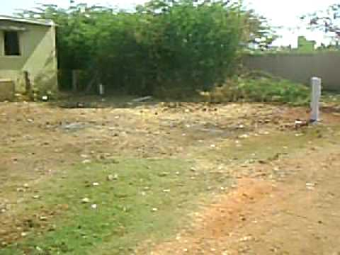 Plot/Land for Sale in Madurai Vilangudi