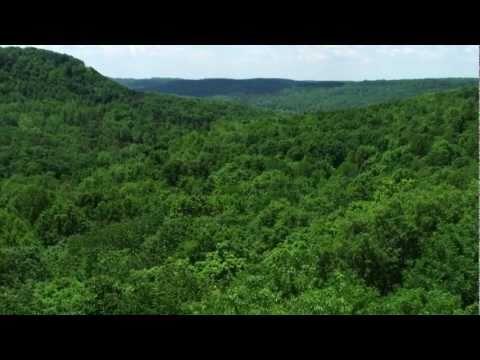 Richard and Lucile Durrell Edge of Appalachia Preserve