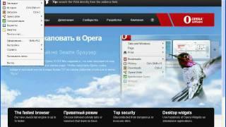 Интерфейс Opera 10.5 (2/9)