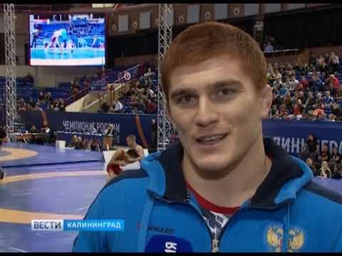 В Калининграде завершился чемпионат России по греко-римской борьбе