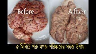 ৫ মিনিটে গরুর মগজ পরিস্কার করার সহজ উপায় ।। How To Remove Veins From Brain Easily ।। Brain Cleaning