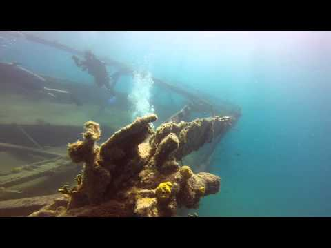Diving Barbados - The Boot & Carlisle Bay Marine Park 120715
