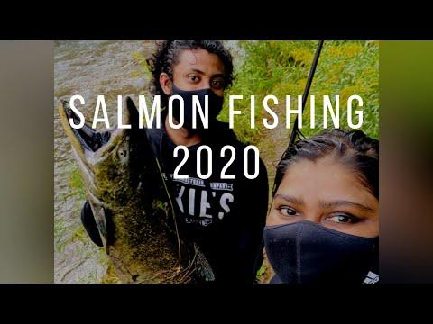 Salmon Fishing 2020 | Oshawa Creek, Ontario, Canada