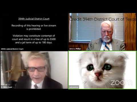 Reminder to check your filter settings....Attorney appears as cat during court hearing