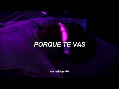 Jeanette - Porque Te Vas ; Letra/lyrics