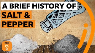 A brief history of salt and pepper | Edible Histories Episode 7 | BBC Ideas