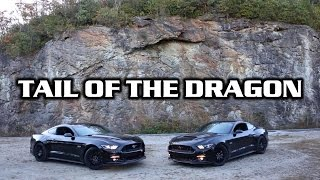 Tail of the Dragon - Mustangs Can Turn! thumbnail