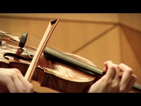 Electrolux: 43dB Symphony