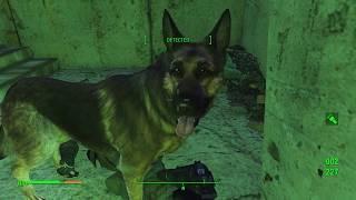 Fallout 4 | Main Quest Walkthru | Dogmeat Mole Rats and Bandages