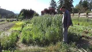 No Till Tv: Organic No Till For Vegetable Production By Good Earth (gary Miller & Amy Plant)