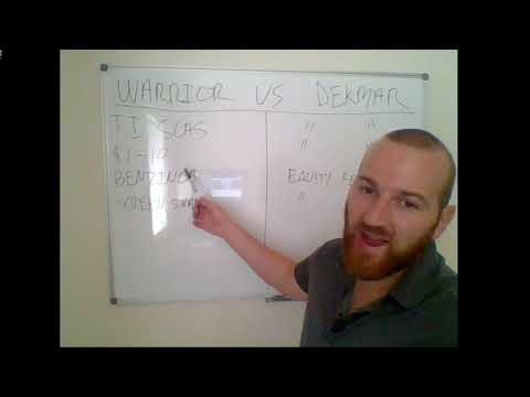 Which Chat room is Better for Beginners? Warrior Trading vs Dekmar Trades