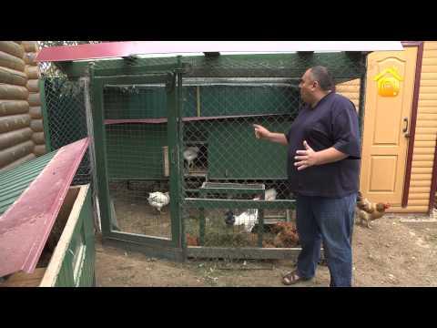 видео: Скотный двор для почти горожанина // forumhouse