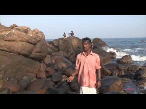 Marine ecology off Tiruvananthapuram coast