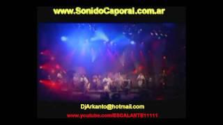 EL ARBOL DE MI DESTINO-LOS KJARKAS(DJ ARKANTO)MIX CAPORAL