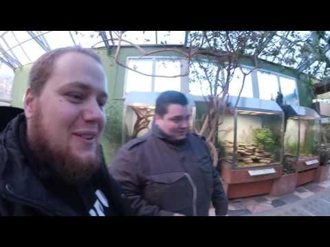 Vlog: Community Treffen in Frankfurt